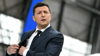 В Госдуме оценили идею Зеленского создать нацсопротивление на Украине
