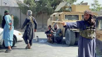 Талибы заявили, что работают над  восстановлением порядка  в Афганистане