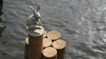 Обновленную скульптуру зайца вернули к Петропавловской крепости