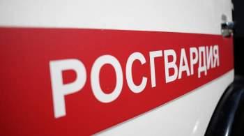 В Брянской области автомобиль Росгвардии сбил двух детей